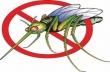 На 30 юни в Горна Оряховица ще бъде извършено опушване срещу комари