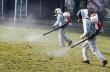 Предстои пръскане на парковете в Горна Оряховица срещу кърлежи и бълхи