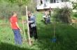 Започна засаждането на дръвчета в Горна Оряховица в рамките на кампанията за пролетно залесяване