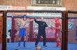 35 бойци дойдоха в Горна Оряховица за Националния турнир по ММА за аматьори